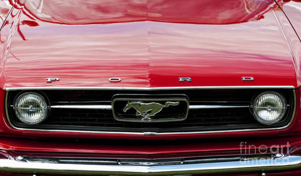 Ford Motor Company Photograph - Red Ford Mustang by Tim Gainey