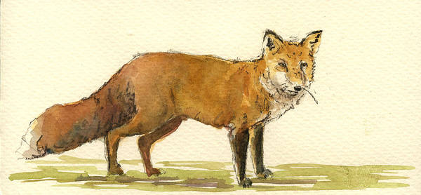 Wall Art - Painting - Red Fox by Juan  Bosco