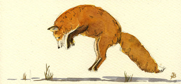 Hunt Wall Art - Painting - Red Fox Jumping by Juan  Bosco