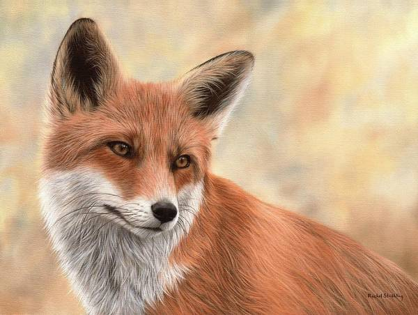 Big Cat Wall Art - Painting - Red Fox Painting by Rachel Stribbling