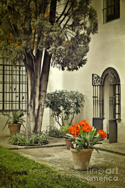 Wall Art - Photograph - Red Geraniums In The Courtyard by Mary Machare