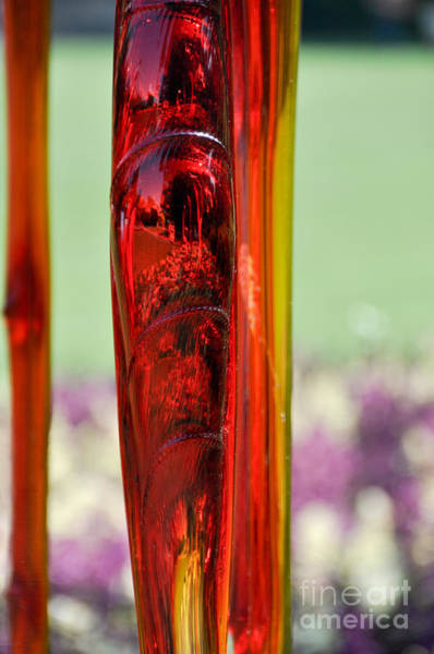Photograph - Red Glass by Cheryl McClure