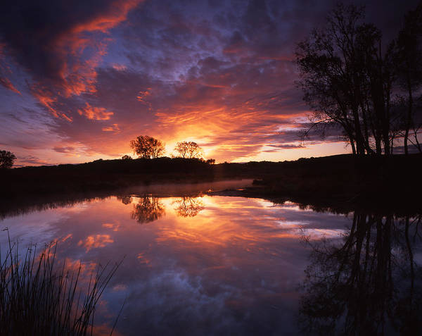 Photograph - Red Glow In The Morn by Ray Mathis