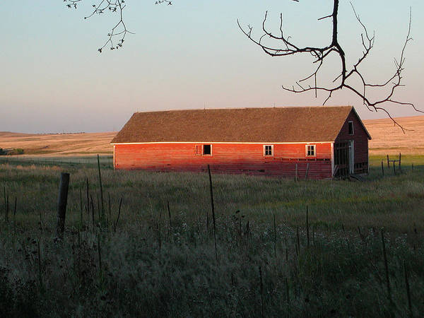 Photograph - Red Granary Barn by Susie Rieple