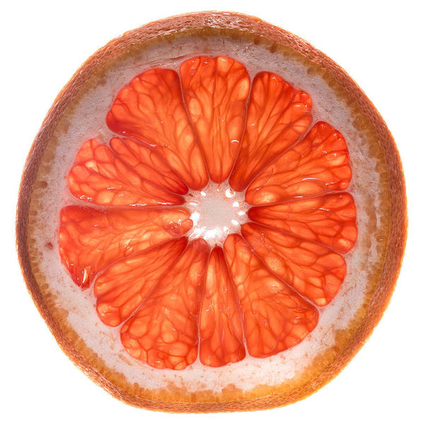 Wall Art - Photograph - Red Grapefruit by Steve Gadomski