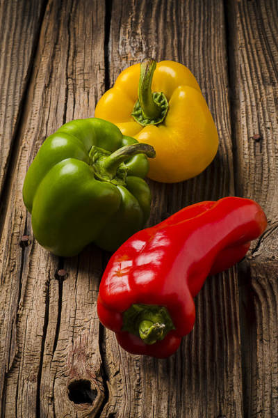 Green Vegetable Photograph - Red Green Yellow Peppers by Garry Gay