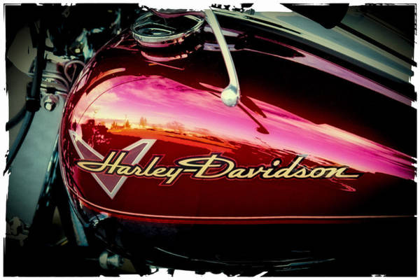 Photograph - Red Harley-davidson by David Patterson