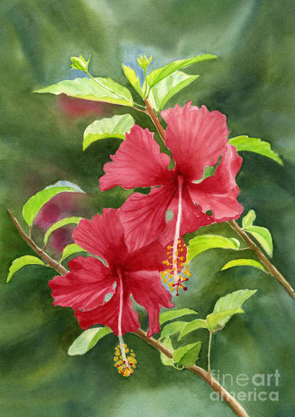Freeman Wall Art - Painting - Red Hibiscus With Background by Sharon Freeman