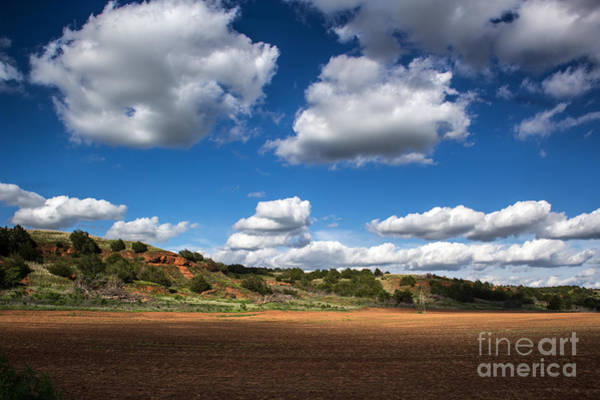 Photograph - Red Hills   Blue Sky by Jim McCain