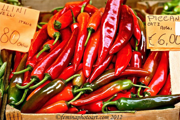 Brillante Photograph - Red Hot Italian Peppers by Femina Photo Art By Maggie