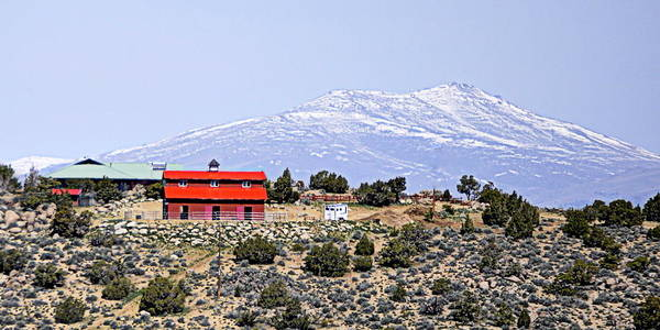 Photograph - Red House In The High Desert by AJ  Schibig