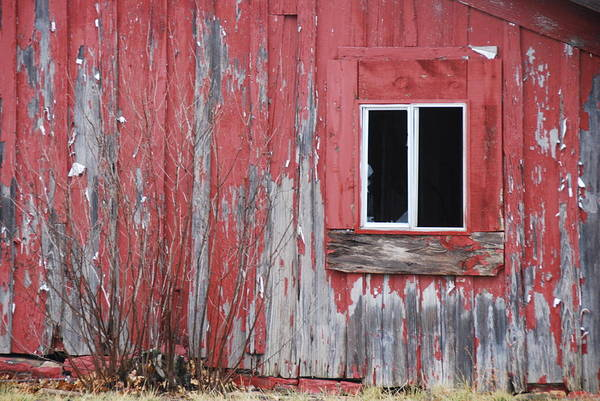 Wall Art - Photograph - Red House by Thea Wolff