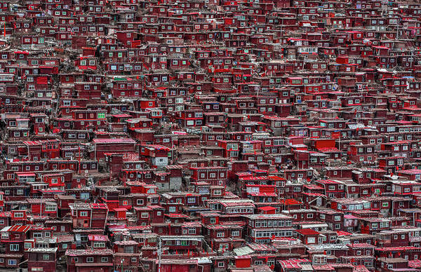 Crowds Wall Art - Photograph - Red Houses by Ali Al-jazeri
