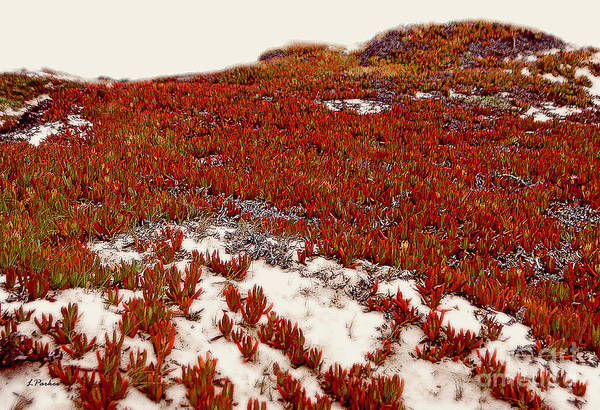 Ice Plant Digital Art - Red Ice On Beach 1 by Linda  Parker