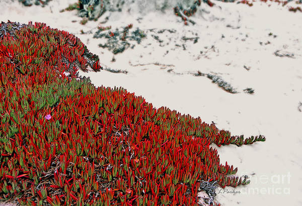 Ice Plant Digital Art - Red Ice On Beach 2 by Linda  Parker