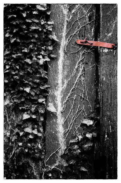 Wall Art - Photograph - Red Latch On Old Barn Door by Steve Hurt