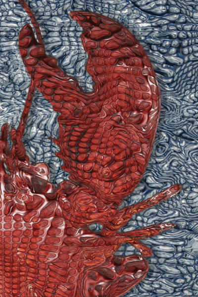Chela Painting - Red Lobster by Jack Zulli