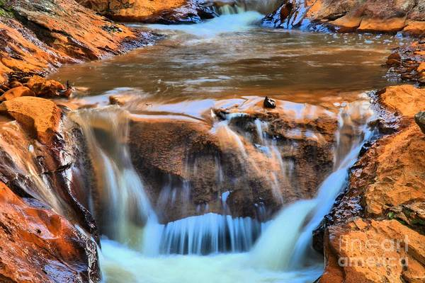Photograph - Red Mountain Creek by Adam Jewell