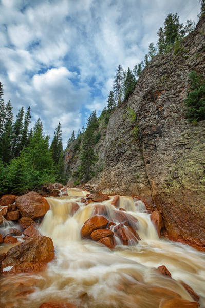 Photograph - Red Mountain Creek by Darren  White