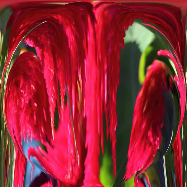 Wall Art - Photograph - Red Orb by Rhonda Humphreys