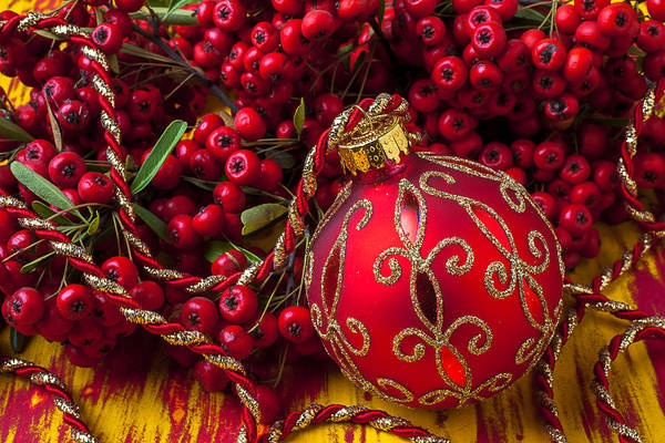 Evergreens Photograph - Red Ornament And Berries by Garry Gay