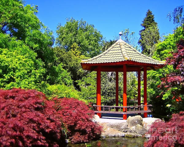 Photograph - Red Pagoda by Kate McKenna