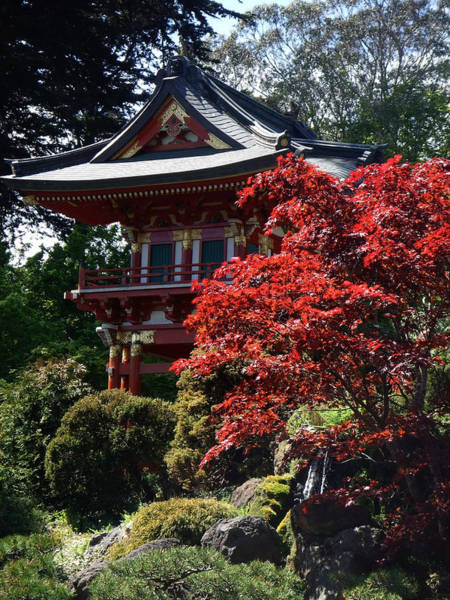 Photograph - Red Pagoda by Richard Reeve