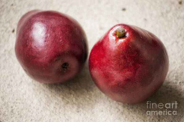 Photograph - Red Pears by Elle Arden Walby