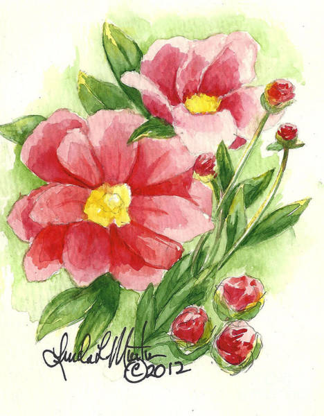 Painting - Red Peony by Linda L Martin
