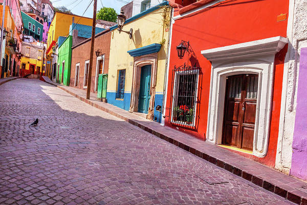 Wall Art - Photograph - Red Pink Colorful Houses Narrow Street by William Perry
