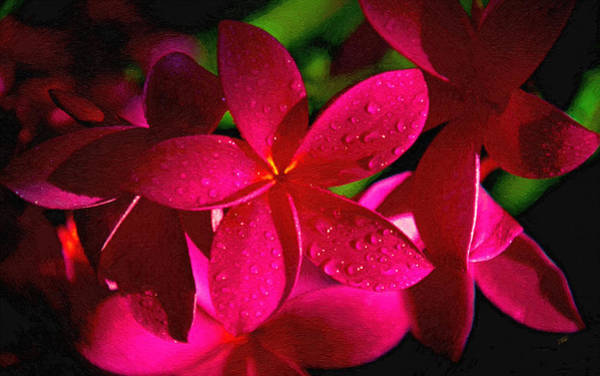 Painting - Red Plumeria by Dean Wittle