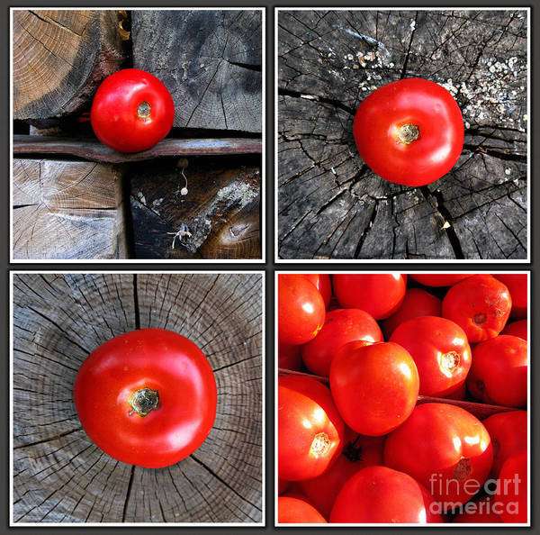 Photograph - Red Point Tomatoes by Daliana Pacuraru