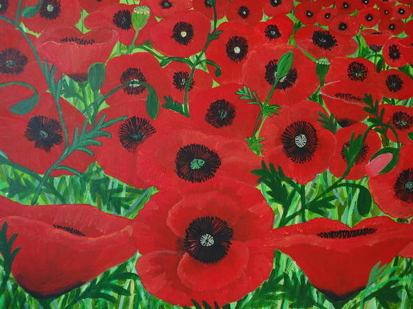 Red Poppies 1 Art Print
