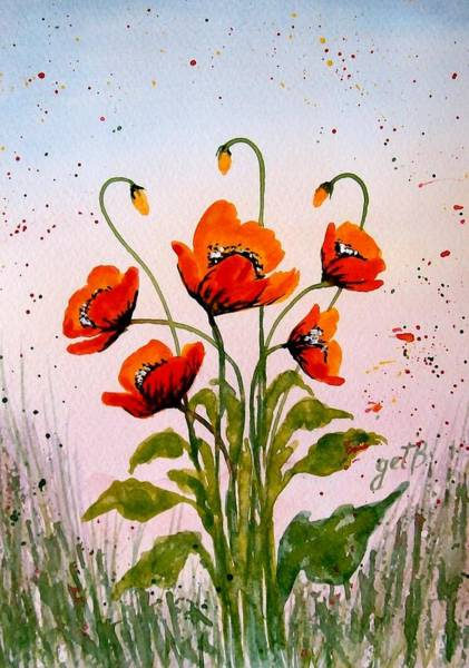 Red Poppies Original Watercolor  Art Print