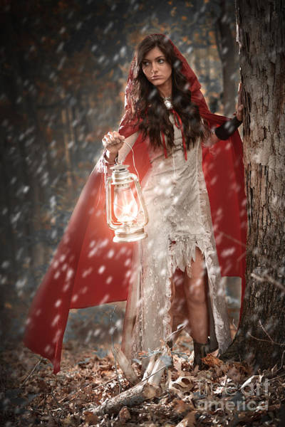 Red Wolf Photograph - Red Riding Hood by Jt PhotoDesign