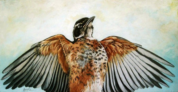 Wall Art - Painting - Red Robin Bird Realistic Animal Art Original Painting by Linda Apple
