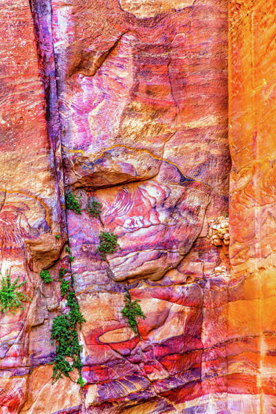 Desert Rose Photograph - Red Rock Abstract, Petra, Jordan by William Perry