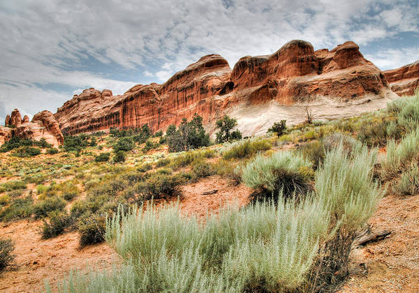 Photograph - Red Rock And Sage. Arches National Park Utah. by Rob Huntley