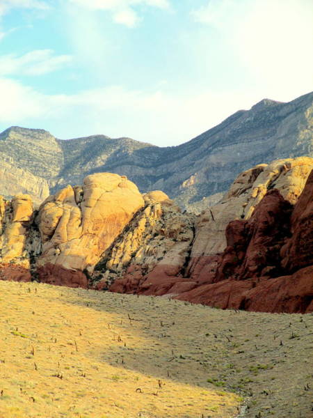 Box Canyon Wall Art - Photograph - Red Rock Canyon 2014 Number 16 by Randall Weidner