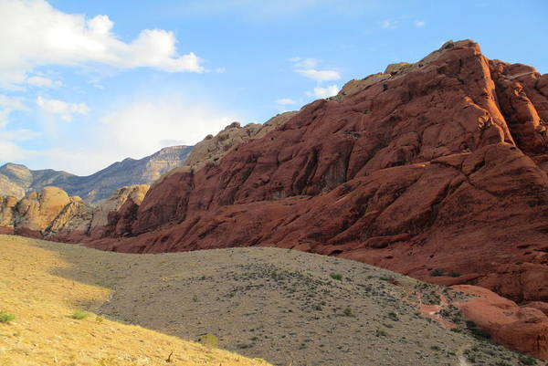 Box Canyon Wall Art - Photograph - Red Rock Canyon 2014 Number 17 by Randall Weidner