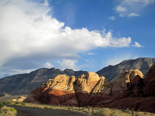 Box Canyon Wall Art - Photograph - Red Rock Canyon 2014 Number 20 by Randall Weidner