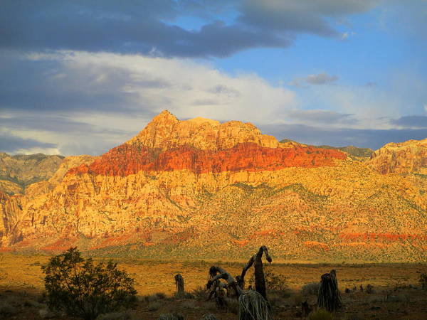 Box Canyon Wall Art - Photograph - Red Rock Canyon 2014 Number 5 by Randall Weidner