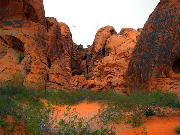 Photograph - Red Rock Canyon. by Frank Wilson