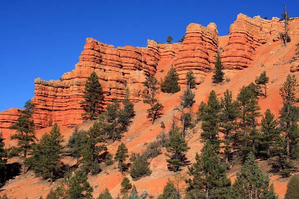 Photograph - Red Rock Canyon - Utah by Aidan Moran