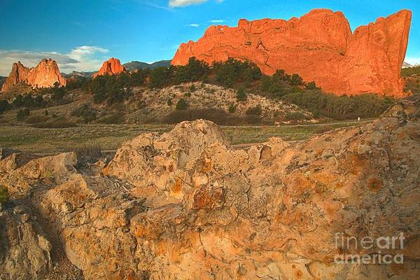 Photograph - Red Rock Caps by Adam Jewell