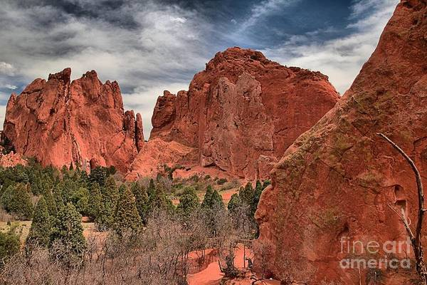 Photograph - Red Rocks At Garden Of The Gods by Adam Jewell