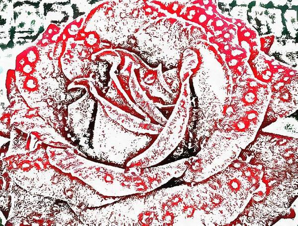Painting - Red Rose by Catherine Lott
