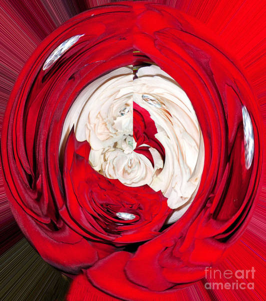 Digital Art - Red Rose Wrap by Mae Wertz