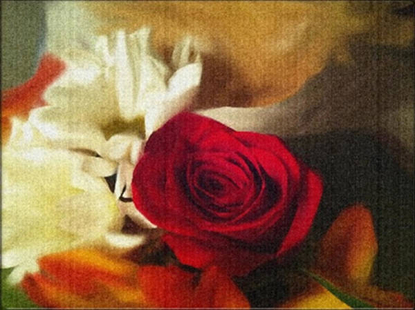 Digital Art - Red Roses And White Daisies by Dennis Buckman