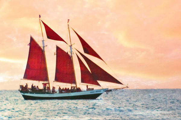 Photograph - Red Sails Sunset by Gene Norris